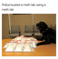 Meth Lab: Police busted a meth lab using a  meth lab