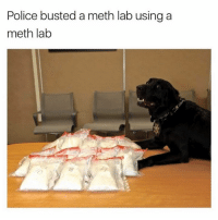He's the good boy 👏: Police busted a meth lab using a  meth lab He's the good boy 👏