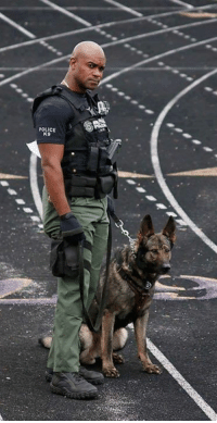 It is with tremendous grief that we announce the passing of our brother and dear friend, K9 Officer Joseph Crowder. Joe died last night during an evening run. Joe was a 14-year veteran of the BBPD who proudly served our country as a staff sergeant in the U.S. Army. He became a member of the department's K9 Unit in 2012 and worked with his partner Daxxx, until the dog was forced to retire last December due to health reasons. Earlier this year, Joe became partners with K9 Iro, a 4-year-old Czech-Shepherd. Joe was a truly kind, dedicated and courageous police officer. We will miss his beautiful smile and tender heart. We love you, Joe, and promise to keep watch over your family. Rest easy, brother. Please keep Joe's family in your thoughts and prayers during this difficult time. Like Page Support Police Officers: POLICE  K9 It is with tremendous grief that we announce the passing of our brother and dear friend, K9 Officer Joseph Crowder. Joe died last night during an evening run. Joe was a 14-year veteran of the BBPD who proudly served our country as a staff sergeant in the U.S. Army. He became a member of the department's K9 Unit in 2012 and worked with his partner Daxxx, until the dog was forced to retire last December due to health reasons. Earlier this year, Joe became partners with K9 Iro, a 4-year-old Czech-Shepherd. Joe was a truly kind, dedicated and courageous police officer. We will miss his beautiful smile and tender heart. We love you, Joe, and promise to keep watch over your family. Rest easy, brother. Please keep Joe's family in your thoughts and prayers during this difficult time. Like Page Support Police Officers