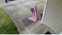 Friends, Memes, and Police: Police officer in Marysville, Washington, goes above and beyond the call of duty when he sees an American flag that was knocked off its pole by wind, rolling it up and placing it safely on the homeowner's porch. Awesome sauce!!! unclesamsmisguidedchildren Tag friends & Follow for more 🦅 👉🏻 @unclesamsmisguidedchildren 👉🏻 @unclesamsmisguidedchildren
