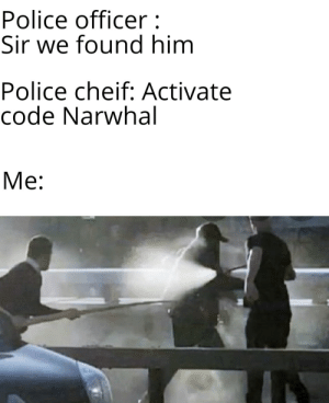 Police, Reddit, and Code: Police officer:  Sir we found him  Police cheif: Activate  code Narwhal  Ме: Narwhal mode activated