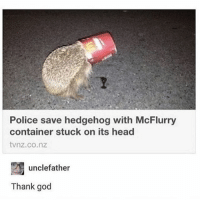 God, Head, and Memes: Police save hedgehog with McFlurry  container stuck on its head  tvnz.co.nz  unclefather  Thank god thank McGoodness