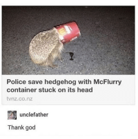 God, Head, and Police: Police save hedgehog with McFlurry  container stuck on its head  tvnz.co.nz  unclefather  Thank god i finna get tacos
