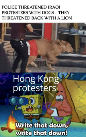 Modern problems require ancient solutions by skinnywenus MORE MEMES: POLICE THREATENED IRAQI  PROTESTERS WITH DOGS THEY  THREATENED BACK WITH A LION  Hong Kong  protesters  Write that down,  write that down! Modern problems require ancient solutions by skinnywenus MORE MEMES