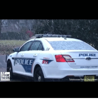 FLORIDA SNOW DAY: Floridians in Tallahassee saw snowfall for the first time in nearly 30 years on Wednesday.: POLIGE  MERSENCY  POLICE  www.talgov.com/tpd  FOX  NEWS  Tallahassee Police Department FLORIDA SNOW DAY: Floridians in Tallahassee saw snowfall for the first time in nearly 30 years on Wednesday.