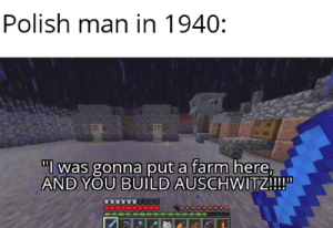 "*laughs in German*: Polish man in 1940:  ""l was gonna put a farm here,  AND YOU BUILD AUSCHWITZ!!!  O0000 *laughs in German*"