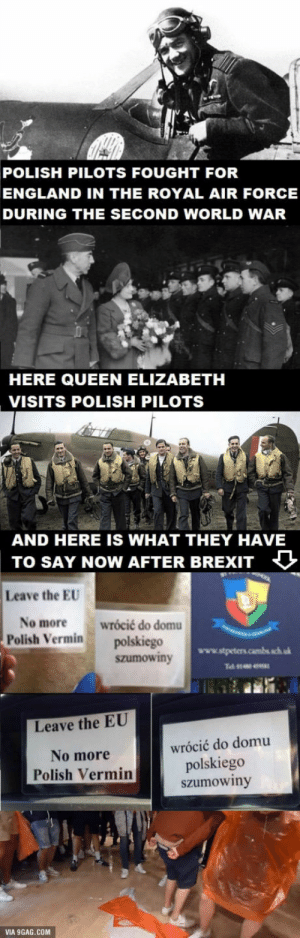If you ever want to fight for Great Britain think again.: POLISH PILOTS FOUGHT FOR  ENGLAND IN THE ROYAL AIR FORCE  DURING THE SECOND WORLD WAR  HERE QUEEN ELIZABETH  VISITS POLISH PILOTS  AND HERE IS WHAT THEY HAVE  TO SAY NOW AFTER BREIT  Leave the EU  No more wrócić do domu  Polish Vermin polskiego  szumowiny  Leave the EU  No more  Polish Vermin  wrócić do domu  polskiego  szumowiny  VIA 9GAG.COM If you ever want to fight for Great Britain think again.