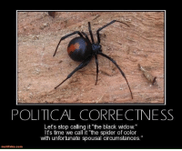 "too far?: POLITICAL CORRECTNESS  Let's stop calling it ""the black wido  It's time we call it ""the spider of color  with unfortunate spousal circumstances.  motifake comm too far?"