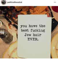 Fucking, Memes, and Best: politicalhoodrat  you have the  best fucking  Jew hair  EVER. creds to @politicalhoodrat and u can see creds in the pics xx hag sameach and never forget to celebrate your Jewishness ❤️