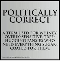 Memes, Sugar, and Trees: POLITICALLY  CORRECT  A TERM USED FOR WHINEY,  OVERLY-SENSITIVE, TREE-  HUGGING PANSIES WHO  NEED EVERYTHING SUGAR-  COATED FOR THEM  FACE Book.coM/STEVEREICHERTOFFICIALPAGE ~TCC
