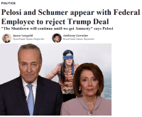 """News, Politics, and Buzzfeed: POLITICS  Pelosi and Schumer appear with Federal  Employee to reject Trump Deal  """"The Shutdown will continue until we get Amnesty"""" says Pelosi  Jason Leopold  BuzzFeed News Reporter  Anthony Cormier  BuzzFeed News Reporter"""