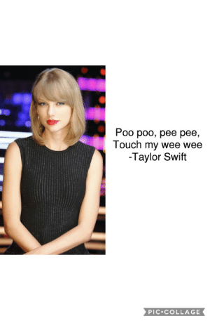Me irl: Poo poo, pee pee,  Touch my wee wee  -Taylor Swift  PIC.COLLAGE Me irl