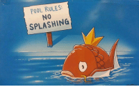 Target, Tumblr, and Blog: POOL RULES  NO  SPLASHING  0 sixtyforty:  this is the most depressing thing i have ever seen it is literally stressing me out LET HER SPLASH