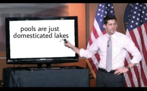 Knowledge has reached a critical mass: pools are just  domesticated lakes Knowledge has reached a critical mass