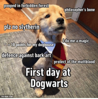 9gag, Bones, and Memes: pooped in forbidden forest  philosophers bone  no Slytherin  plz do me a magic  10 points for  my doghouse  defence against barkart  protect of the muttblood  First day at  Dogwarts  VIA 9GAG.COM You are a wizard, Hairy! Follow @9gag @9gagmobile 9gag goodboy harrypotter instadog dogcosplay hogwarts