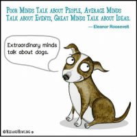 Dogs, Love, and Memes: POOR MINDS TALK ABOUT PEOPLE, AvERAGE MINDS  TALK ABOUT EVENTS, GREAT MINDS TALK ABOUT IDEAS.  1  Eleanor Roosevelt  Extraordinary minds  talk about dogs.  OREDANDHowLING I just love this           #dogs