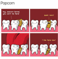 Live, Popcorn, and Quiet: Popcorn  hey, Popcorn kernel,  you can't be here!  quiet, narc!  I live here now!  o 😂😂 so annoying