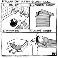 Laundry, Memes, and Cartoon: POPULAR CAT SLEEPING LOCATIONS..  THE BATH  1  2. LAUNDRY BASKET  DADDYS THROAT  PAPER BAG  FACEBOOK.COM/ON THE PROwl CAT CARTOONS Popular Cat Sleeping Locations... #Cats #Ontheprowl #Rupertfawcett