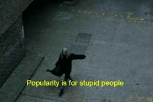 stupid people: Popularity is for stupid people