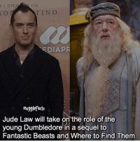 """qotd : comment """"😏"""" if you knew this and """"😱"""" if you didn't.: POR  Y DIRI  TINO  EDIAPR  mugglefacts  Jude Law will take on the role of the  young Dumbledore in a sequel to  Fantastic Beasts and Where to Find Them qotd : comment """"😏"""" if you knew this and """"😱"""" if you didn't."""