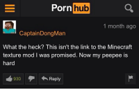 porn hub: Porn hub  1 month ago  CaptainDongMan  What the heck? This isn't the link to the Minecraft  texture mod I was promised. Now my peepee is  hard  930Reply