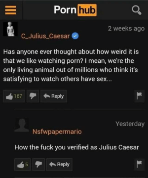 What the actual fuck via /r/memes https://ift.tt/2LeWxLw: Porn hub  2 weeks ago  C_Julius Caesar  Has anyone ever thought about how weird it is  that we like watching porn? I mean, we're the  only living animal out of millions who think it's  satisfying to watch others have sex...  Reply  167  Yesterday  Nsfwpapermario  How the fuck you verified as Julius Caesar  Reply  5  LO What the actual fuck via /r/memes https://ift.tt/2LeWxLw