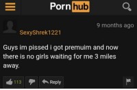 Me_irl: Porn hub  9 months ago  SexyShrek1221  Guys im pissed i got premuim and now  there is no girls waiting for me 3 miles  away.  113Reply Me_irl