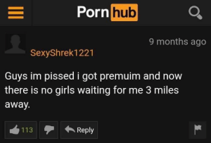 meirl: Porn  hub  9 months ago  SexyShrek1221  Guys im pissed i got premuim and now  there is no girls waiting for me 3 miles  away.  113  Reply meirl