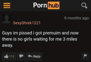 me irl: Porn  hub  9 months ago  SexyShrek1221  Guys im pissed i got premuim and now  there is no girls waiting for me 3 miles  away  113Reply me irl