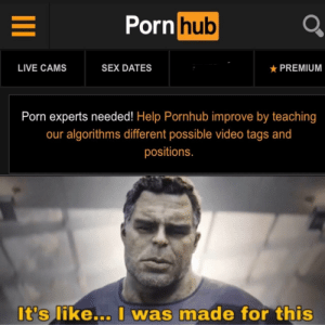 My entire life has been a buildup to this moment: Porn hub  LIVE CAMS  SEX DATES  PREMIUM  Porn experts needed! Help Pornhub improve by teaching  our algorithms different possible video tags and  positions.  It's like... I was made for this My entire life has been a buildup to this moment