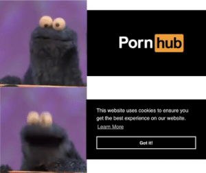 *happy cookie noises*: Porn hub  This website uses cookies to ensure you  get the best experience on our website.  Learn More  Got it! *happy cookie noises*