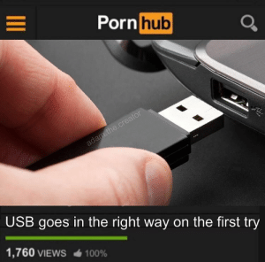 Anaconda, Dank, and Memes: Porn  hub  USB goes in the right way on the first try  1,760 VIEWS  100% Totally unrealistic plot by 1j12 MORE MEMES