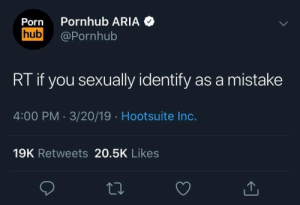 Pornhub, Porn, and MeIRL: Porn Pornhub ARIA  hub@Pornhub  RT if you sexually identify as a mistake  4:00 PM 3/20/19 Hootsuite Inc.  19K Retweets 20.5K Likes meirl