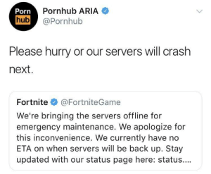 meirl: Pornhub ARIA  hub@Pornhub  Please hurry or our servers will crash  next  Fortnite@FortniteGame  We're bringing the servers offline for  emergency maintenance. We apologize for  this inconvenience. We currently have no  ETA on when servers will be back up. Stay  updated with our status page here: status.... meirl