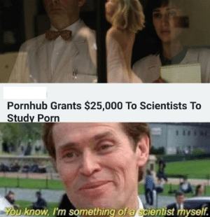 Meme, Memes, and Pornhub: Pornhub Grants $25,000 To Scientists To  Study Porn  u know, I'm something of a scientist myself. The perfect meme combo via /r/memes https://ift.tt/2RYkA47