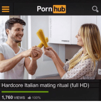 Anaconda, Memes, and Pornhub: Pornhub  Hardcore Italian mating ritual (full HD)  1,760 VIEWS  100% @adam.the.creator called this the breakout hit of the year. (RP @adam.the.creator 🍝)