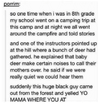 Dank, 🤖, and The Forest: porrim.  so one time when i was in 8th grade  my school went on a camping trip at  this camp and at night we all went  around the campfire and told stories  and one of the instructors pointed up  at the hill where a bunch of deer had  gathered. he explained that baby  deer make certain noises to call their  mothers over, he said if we were  really quiet we could hear them  suddenly this huge black guy came  out from the forest and yelled YO  MAMA WHERE YOU AT