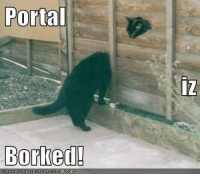 Borked: Portal  Borked!