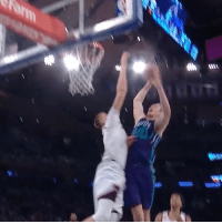 Porzingis is swatting all of the Hornets at MSG tonight 👀🖐: Porzingis is swatting all of the Hornets at MSG tonight 👀🖐
