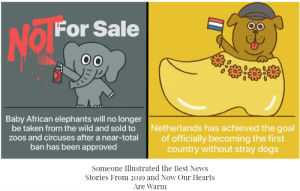 positive-memes:    The Best News Stories From 2019 illustratedfull illustrations here: positive-memes:    The Best News Stories From 2019 illustratedfull illustrations here