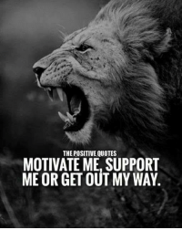 positive quotes: POSITIVE QUOTES  MOTIVATE ME SUPPORT  ME OR GET OUT MY WAY
