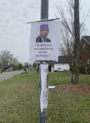 Possibly the best sign ever posted in my neighborhood…: Possibly the best sign ever posted in my neighborhood…