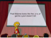 Post Malone, MeIRL, and Lysol: Post Malone looks like the .01% of  germs Lysol doesn't kill meirl