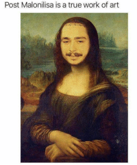 Beautiful, Memes, and True: Post Malonilisa is a true work of art Memes can be beautiful art too! #RandomMemes #FunnyMemes #PostMalone #PointlessMemes