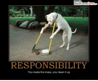 Posted at  BlackFrame  ame  RESPONSIBILITY  You made the mess, you clean it up Responsibility - You made the mess, you clean up  BOL #dog