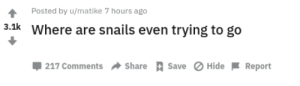 MeIRL, Hide, and Snails: Posted by u/matike 7 hours ago  3.1k Where are snails even trying to go  Share Save Hide  217 Comments  Report meirl
