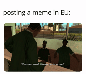 Meme, Prison, and Irl: posting a meme in EU:  LOX  Whassup, man? Wanna go to prison? Me irl
