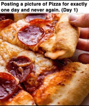 (Day 1): Posting a picture of Pizza for exactly  one day and never again. (Day 1) (Day 1)