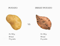 POTATO  SWEET POTATO  VS  Per 100 g  88 kcal  19 g carbs  Per 100 g  98 kcal  21 g carbs RT @caloriedetails: https://t.co/GW43cVIfTN