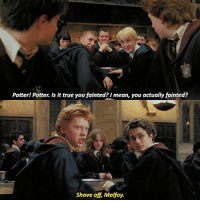 Memes, True, and Mean: Potter! Potter. Is it true you fainted? I mean, you actually fainted?  Shove off, Malfoy. [ PrisonerOfAzkaban – 2004] — Q: Ron, Harry or Draco?